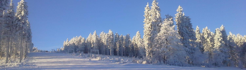 Slunečný den na sjezdovce s namrzlými stromy